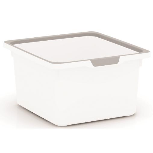 KIS KisKreo Box