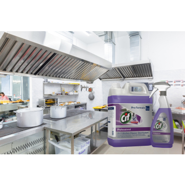 CIF Professional 2in1 Desinfektionsreiniger 750 ml - Sprühflasche