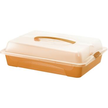Rotho Partybutler Kuchen Transportbox grün// transparent Kuchenbehälter flach NEU