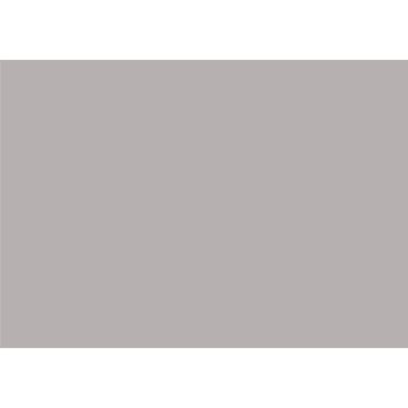 Mank Airlaid-Linclass Tischset Basics, silber