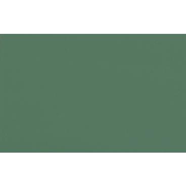 SAICOS Haus- & Gartenfarbe, schilfgrün