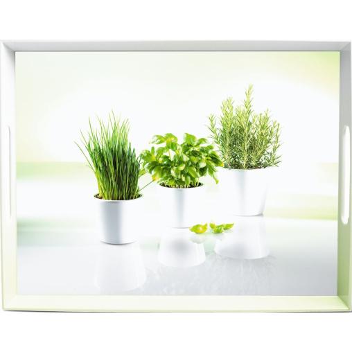 """EMSA Classic Tablett """"Herbs"""""""