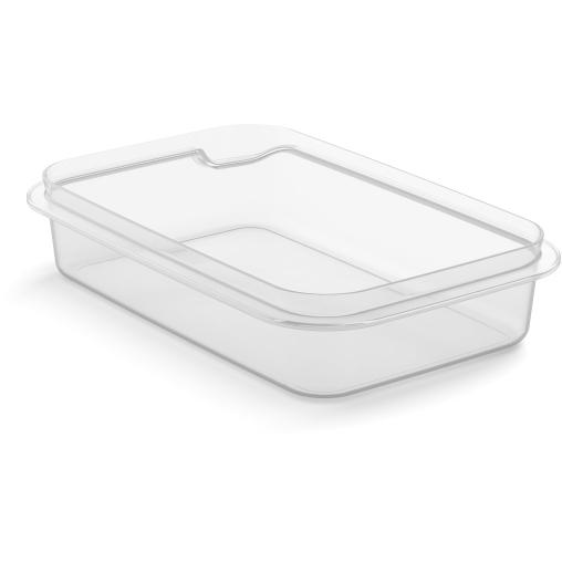 Rotho MATCH & GO Frischhaltedosen-Unterteil big, transparent
