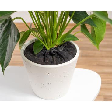 reer Pflanzenschutznetz Durchmesser: 20 cm