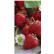 Produktbild: Papstar Servietten, 3-lagig, 1/8 Falz, 33 cm x 33 cm