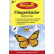 Aeroxon® Fliegenköder Insekten-Falter