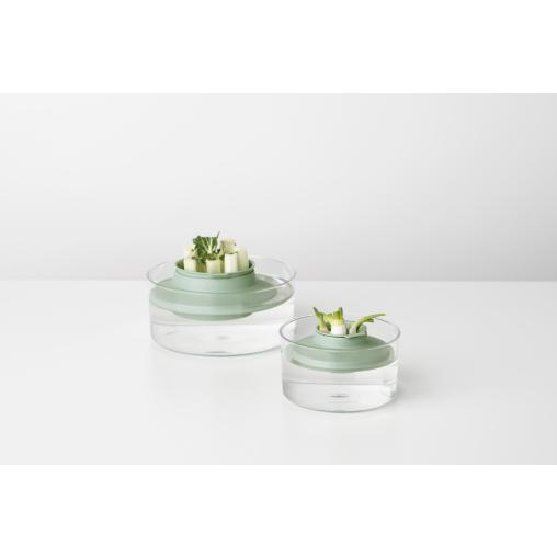 Brabantia TASTY+ Nachzucht-Kit für Kräuter/Gemüse