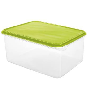 Rotho RONDO Kühlschrankdose, eckig, lime grün