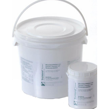 Lysoform Trichlorol® Wischdesinfektion