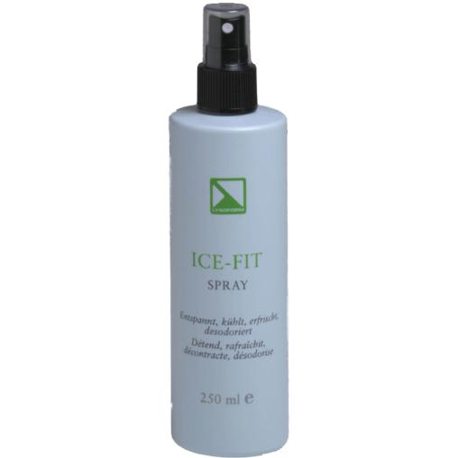 Lysoform Ice-Fit-Spray