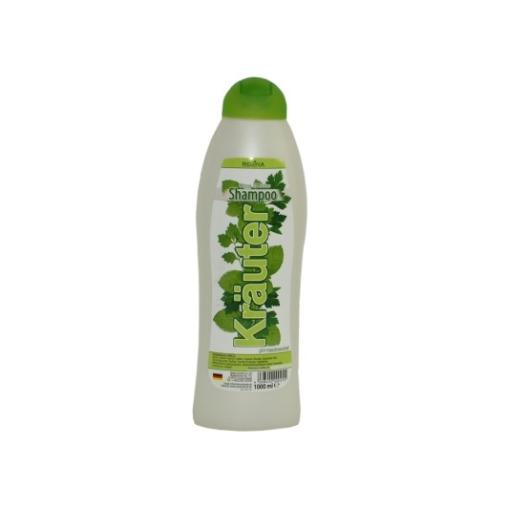 REGINA Shampoo